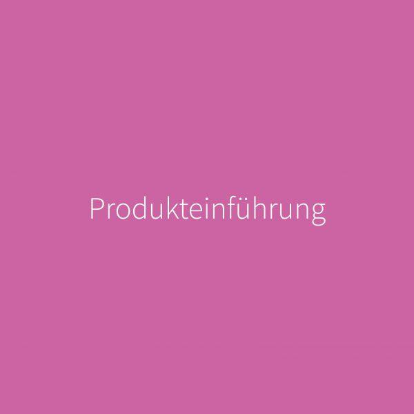07 Produkteinführung